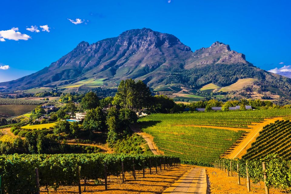 Stay in South Africa: monuments and sights not to be missed